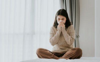 Como evitar problemas respiratórios na sua casa com os produtos certos de decoração?